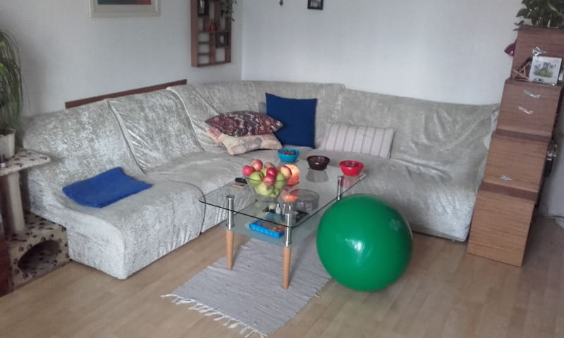 Dvoupokojový byt v Plzni - Plzeň - Lägenhet