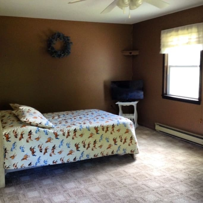 """Kids Room"" upstairs Full Bed, 2 twin beds,  cable TV, a/c unit."