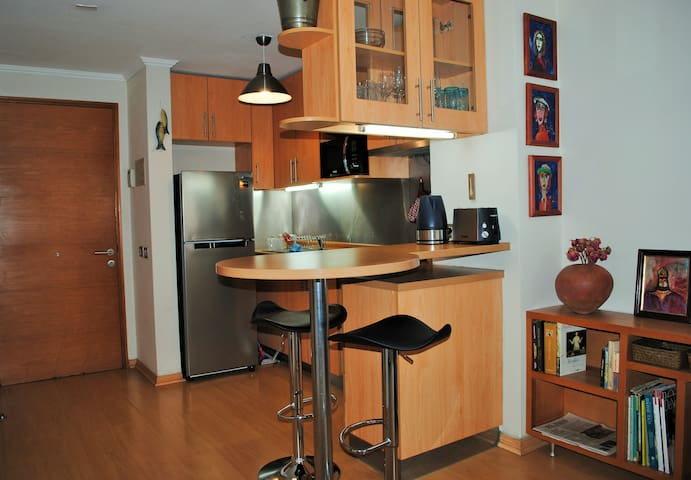 Studio apartment in Providencia