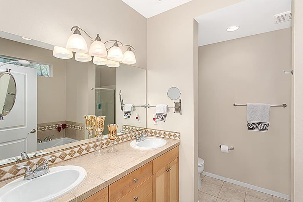 Master bath with double sink, shower and bath tub