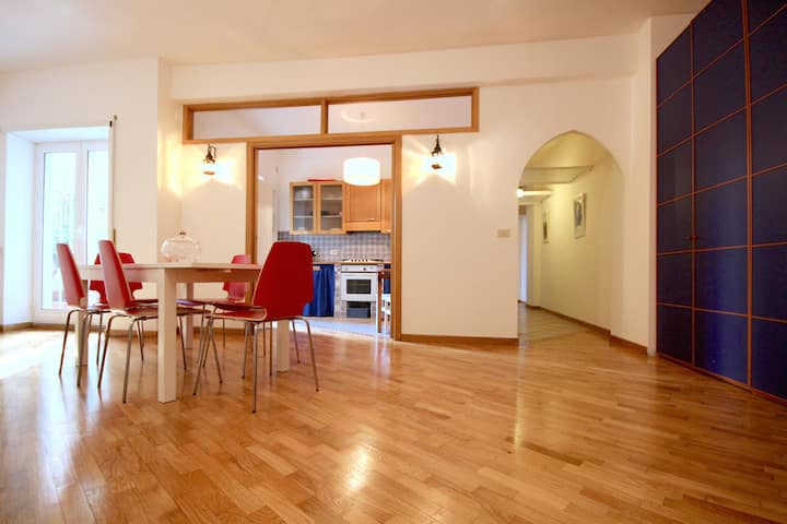 Large Flat with Terrace in St. Paul