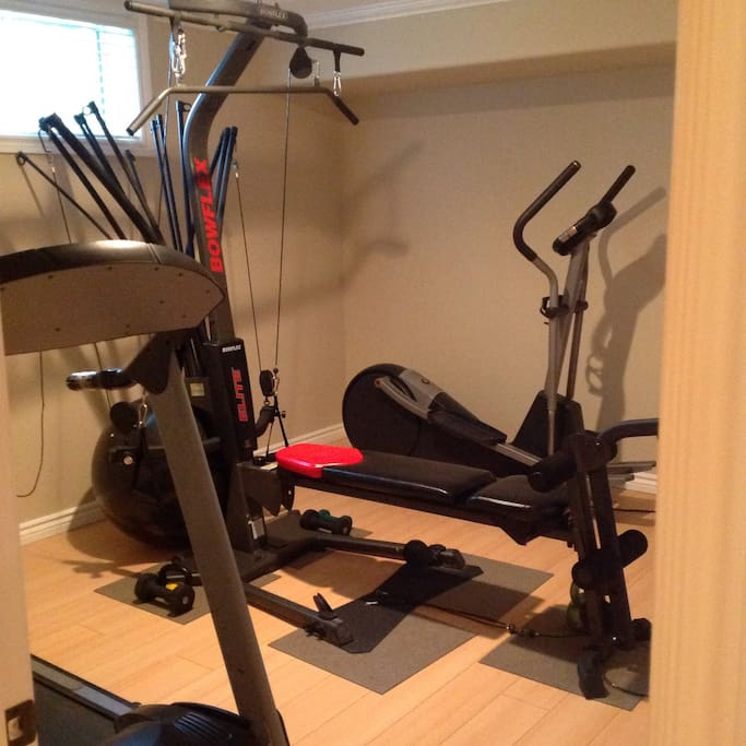 Work Out Studio with treadmill, bowflex and elipticle.