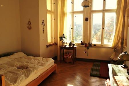 Zimmer in gemütlicher Altbau WG - กรุงเบอร์ลิน