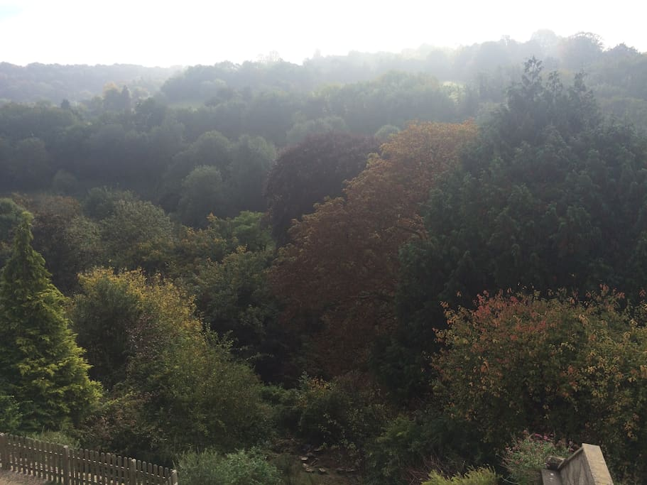 our gorgeous valley view from every room
