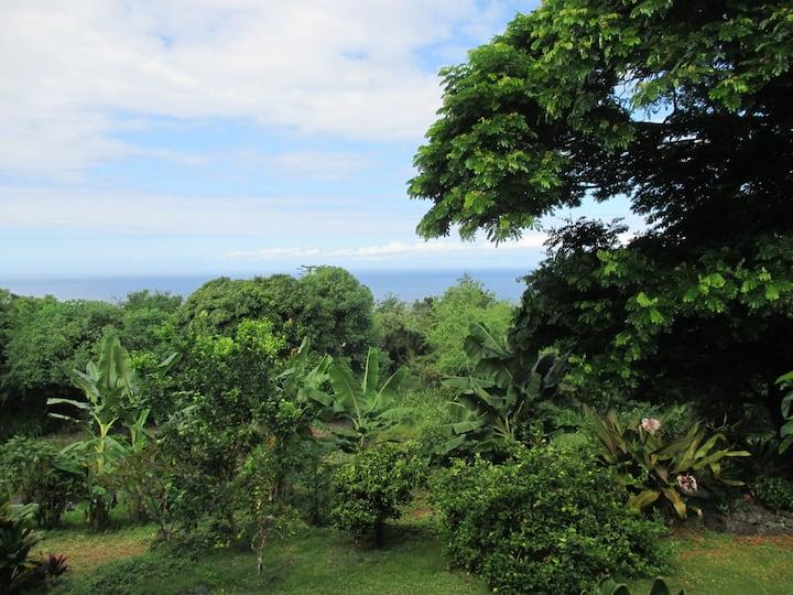 Your Private Hawaiian Paradise,  Honaunau, Kona