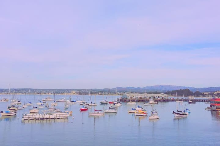 Soothe your soul in Monterey - Monterey - Apartment