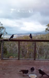 Currawong room No. 3 - Geilston Bay - Bed & Breakfast