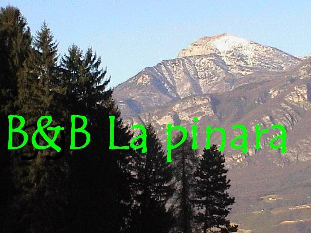 B&B LA PINARA - 37 sq m. to let - Povo