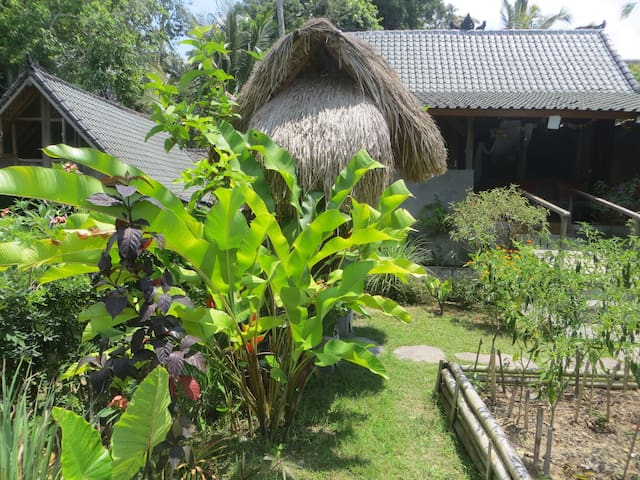 2 Home Ricefield Retreat with Pool  - Ubud - Huis