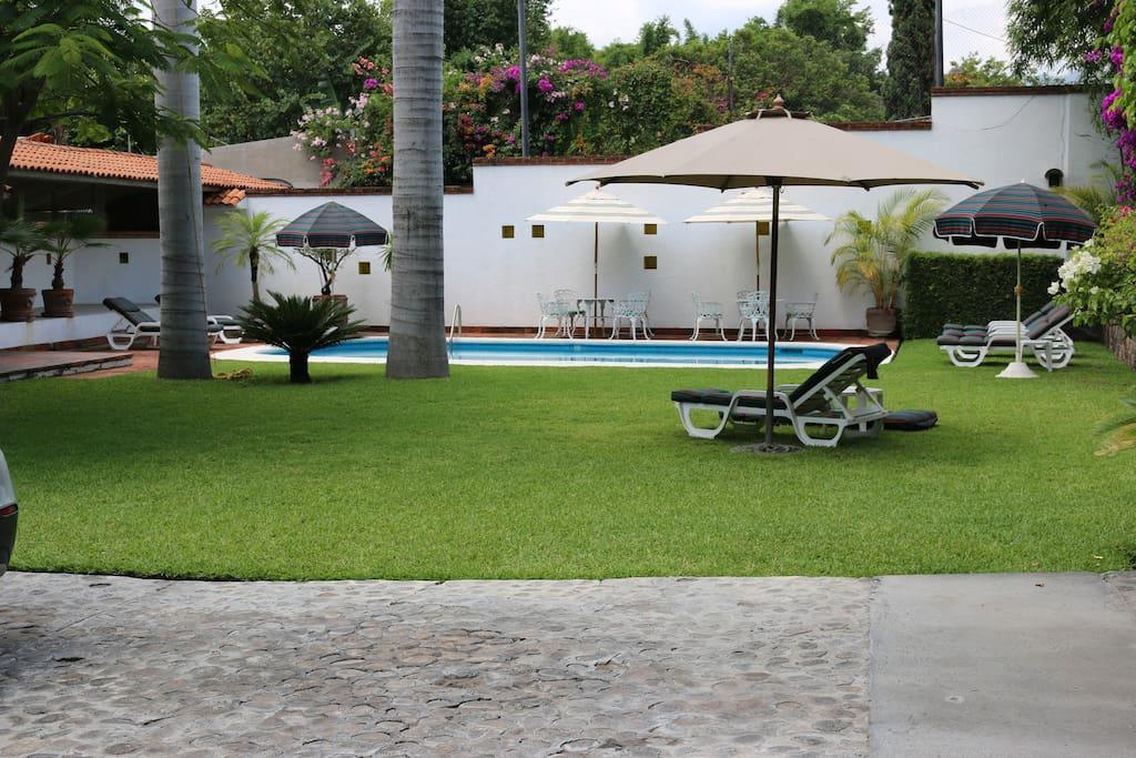 Alberca y jardín.