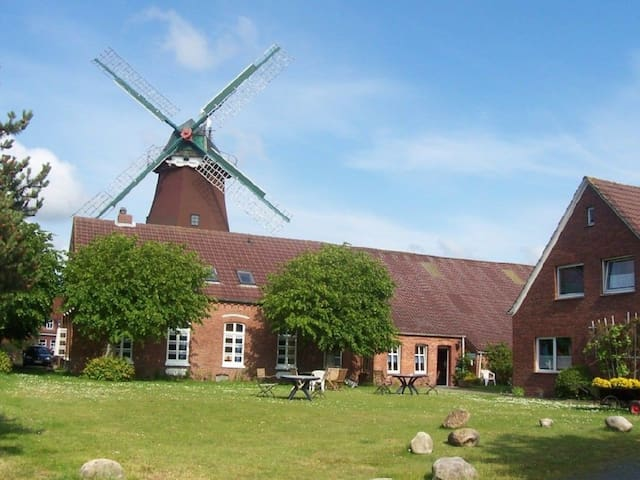 Die antike Mühle - 7 Fewos - Dornum - Kondominium