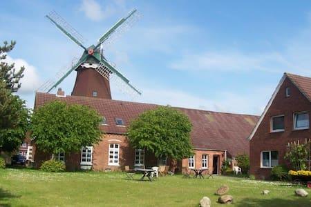 Die antike Mühle - 7 Fewos - Dornum