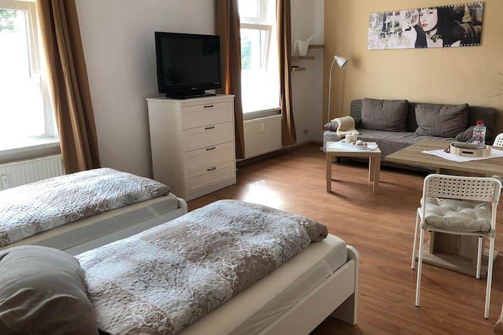 ZW01a Gemütliches, zentral gelegenes, 1-Zimmer Apartment in Zwickau