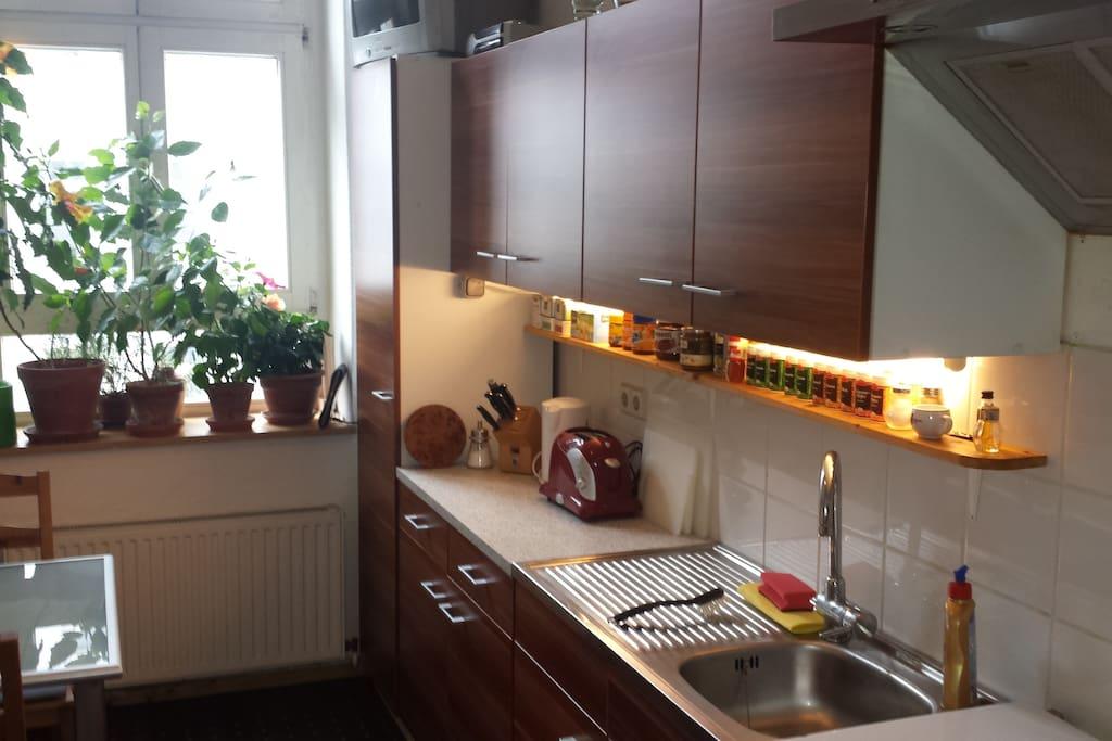 Küchenzeile mit Blick zum Fenster