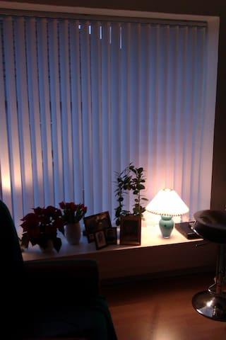 Gæsteværelse / pendlerværelse - Esbjerg - Apartment