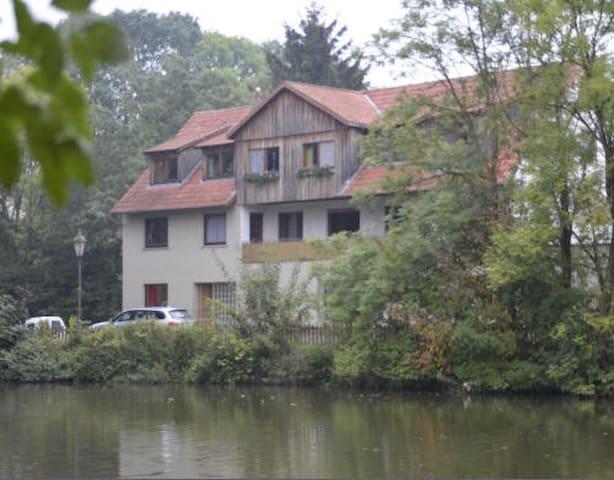 Entspannen am Mühlenteich - Marienmünster - Ortak mülk
