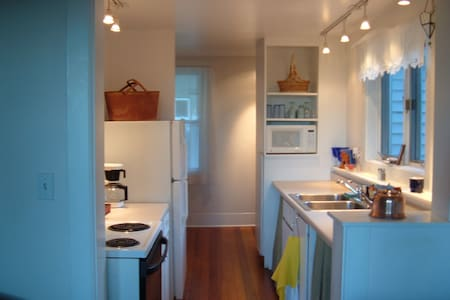 dog friendly in town quiet location - Petoskey - House
