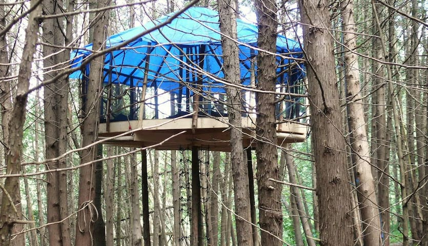 Flying Yurt Treehouse - Shelburne - Bed & Breakfast