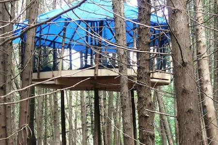 Flying Yurt Treehouse - Shelburne