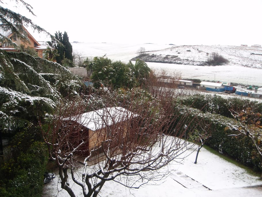GARDEN UNDER SNOW WITH THE ROLLING ROMAN HILLS IN THE BACKDROP