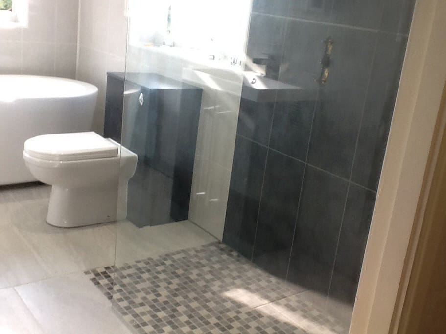 Private bathroom with stand alone deep bath, walk -in shower, wash-basin and WC.