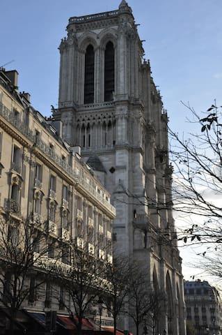 Les Toits de Notre-Dame !