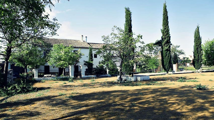 Authentic Andalusian farmhouse!!! - Íllora - Dům