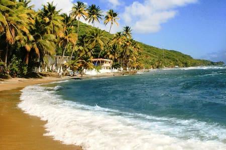Countryside Oceanfront Getaway - 2 - Patillas - Villa