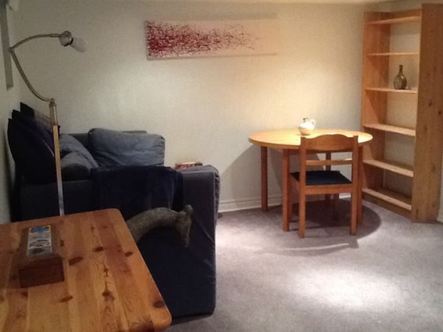 Couch, table and shelving unit
