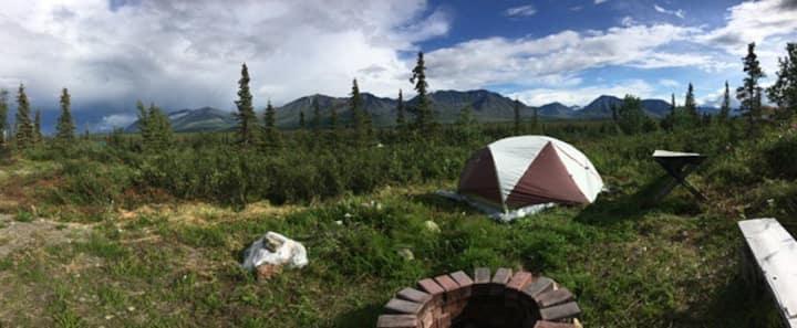 Denali View: RV Camping/Tent Site, incredible view