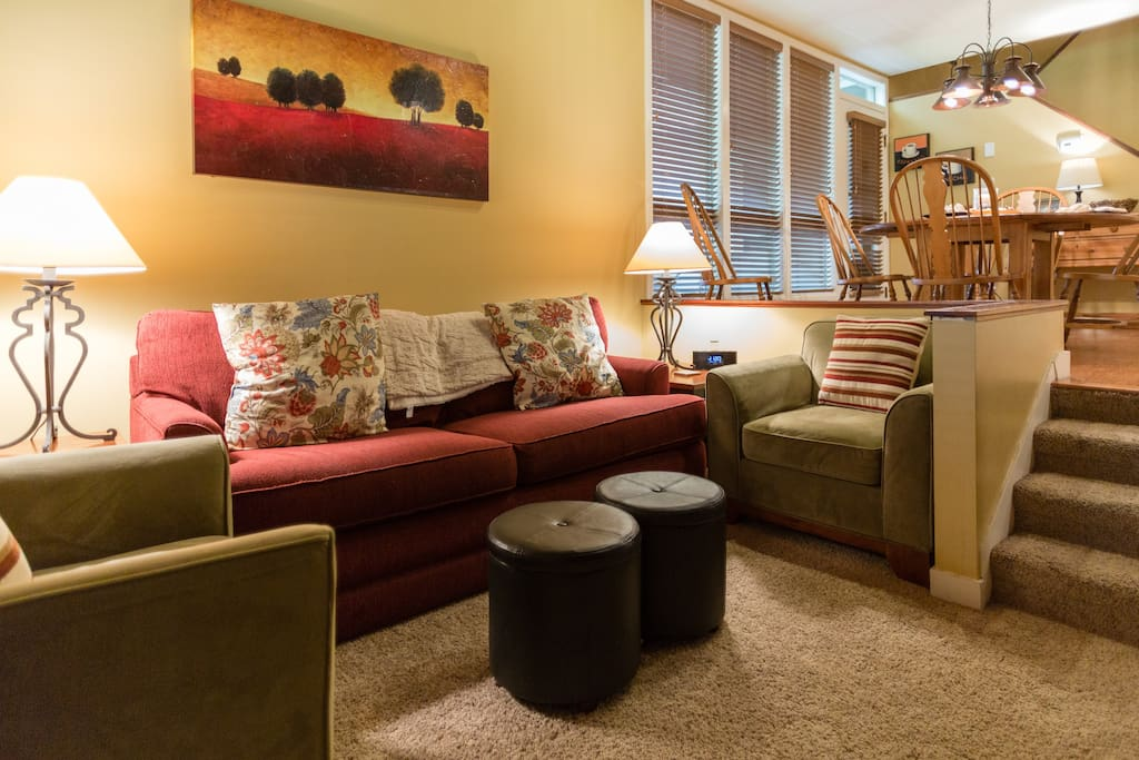 Large living room area with pull out sleeper sofa