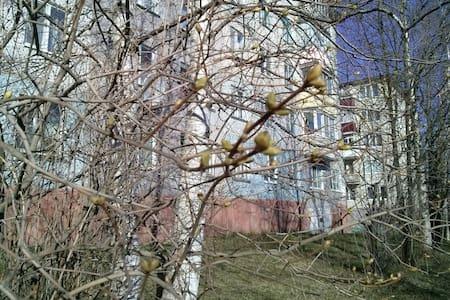 Светлая комната - Novodvinsk - 公寓