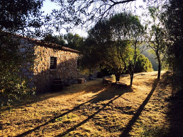 Relaxing Lakeside Country Farmhouse - Sant'Antonio di Gallura - Casa