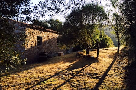 Relaxing Lakeside Country Farmhouse - Sant'Antonio di Gallura