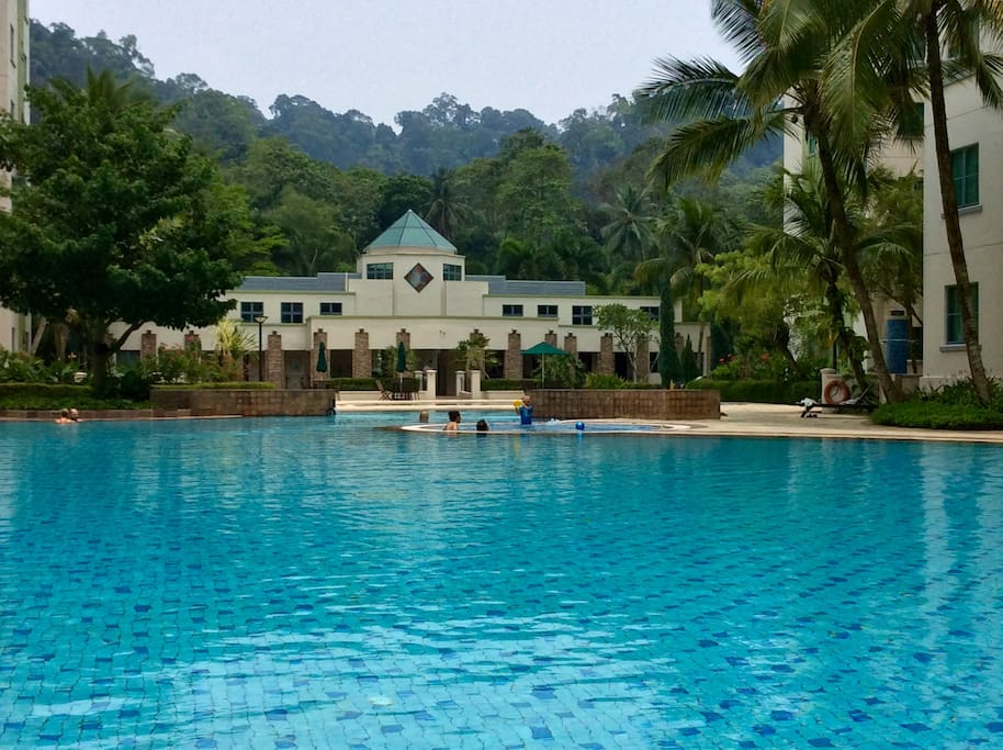 Forest-facing large swimming pool with heated jacuzzi.