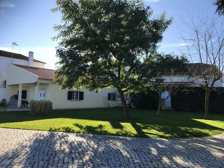 House with one bedroom in Alcanhões, with shared pool, enclosed garden and WiFi