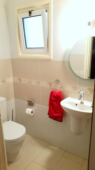 This is a small toilet without the shower section.