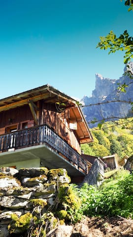 Chalet in the Fer-à-Cheval cirtque - Sixt-Fer-à-Cheval - Chalet