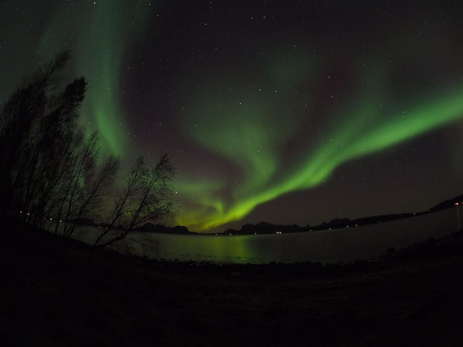 Northern lights over the fjord in October 2015. Photo by Mario.