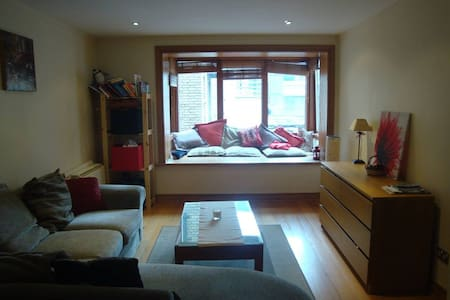 Great flat in the hearth of Dublin, 3 mins walking to temple bar, 10 mins from Stephen green. The flat is situated in the Italian quarter, near delicious restaurants and local pubs. It's a perfect stay for a discovery weekend of Dublin.