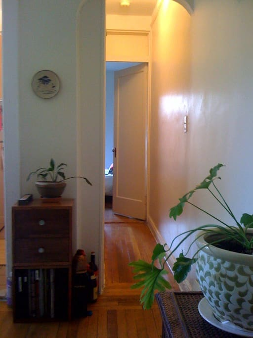 Hallway (view from sofabed)