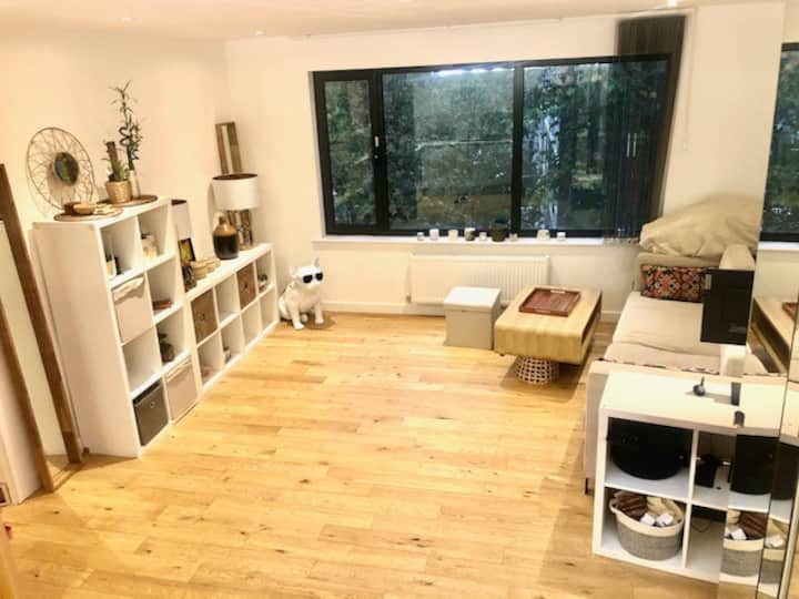 1 Chilling Bedroom Flat in Central Depford