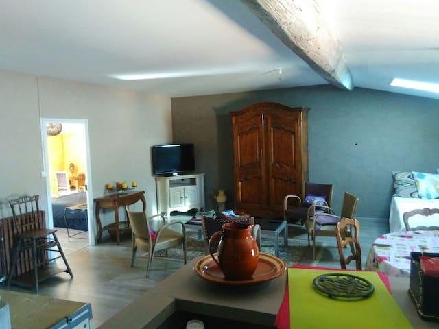 Charmant Apt dans maison de maître - Carcassonne - Wohnung
