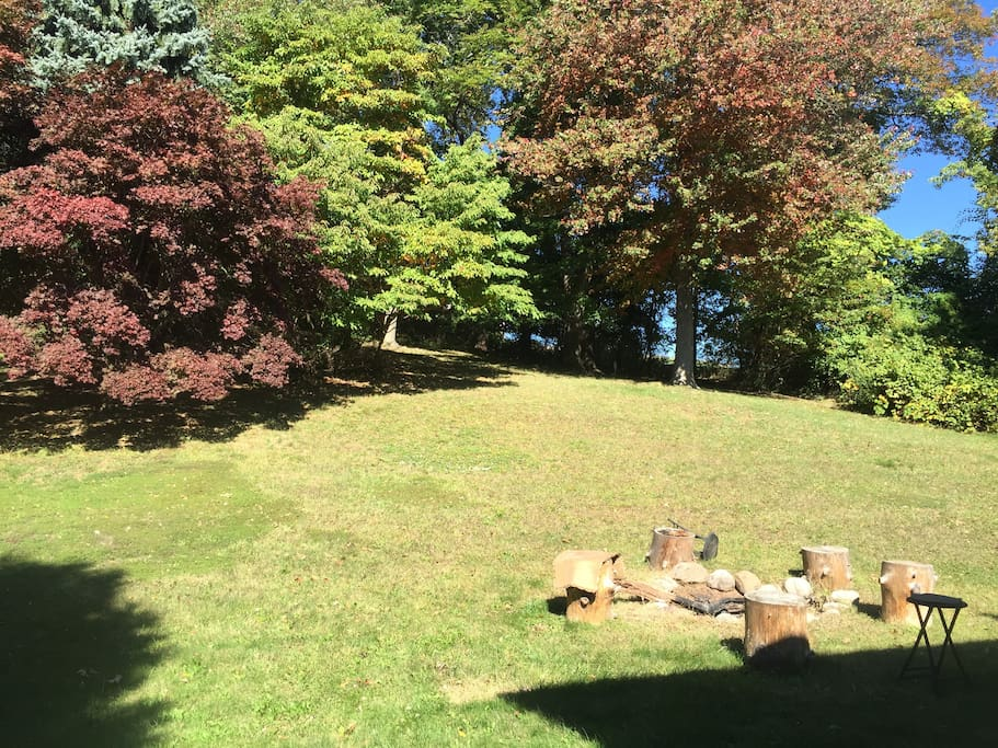 Our beautiful tree-lined backyard with firepit