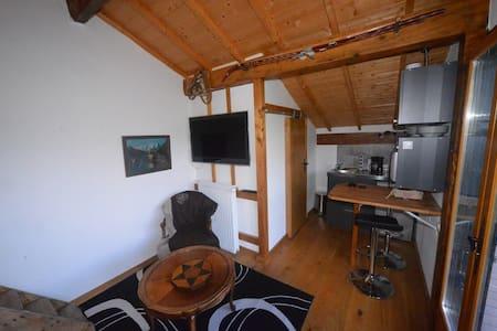 petit studio face au lac - Le Bourget-du-Lac