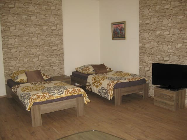 Gemütliche 1 Zi-Wohnung nahe Mainz - Bodenheim - Apartment