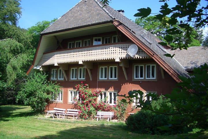 Haus Bacmeister Wohnung II - Sankt Blasien - Byt
