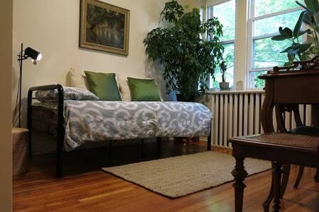 Brookline's European Flair - 布鲁克莱恩 - 公寓