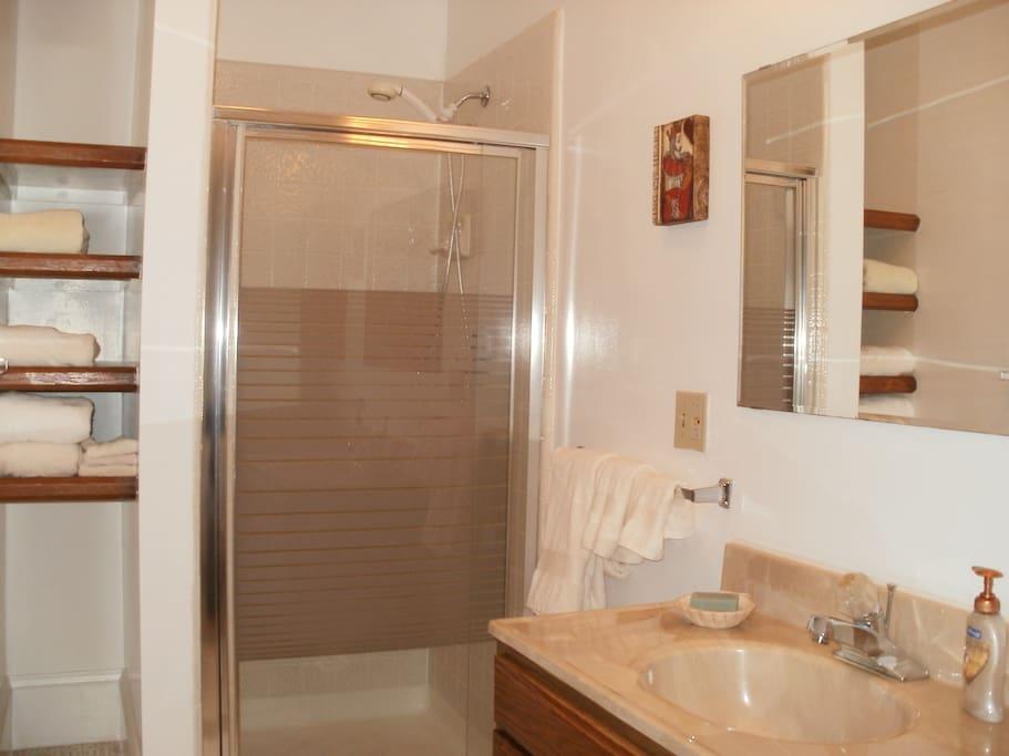 Sunny ,roomy attached bathroom