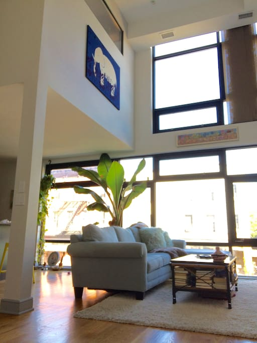 Those are 25 ft ceilings and a genuine banana tree!